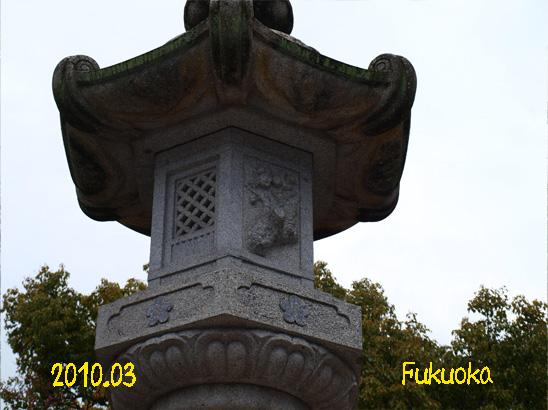 110.jpg